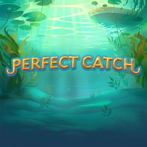 Perfect Catch