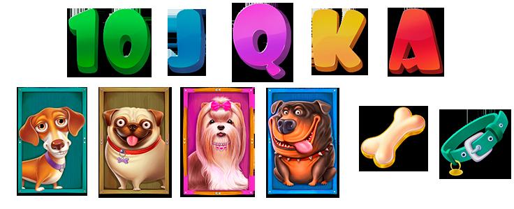 Symbols-10,j,q,k,a,-huesito-y-collar-de-perro,-4-perretes