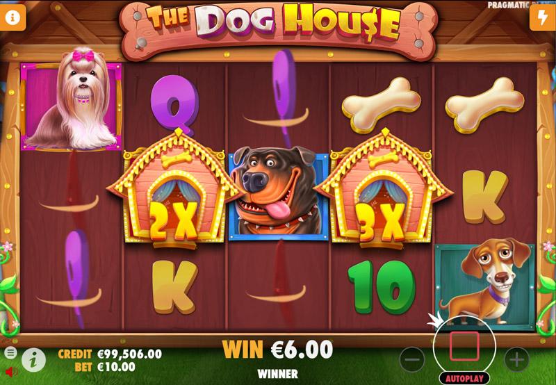 DOG-HOUSE-MULTIPLICADORE