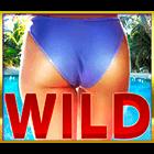 Wild Tragaperras Torrente